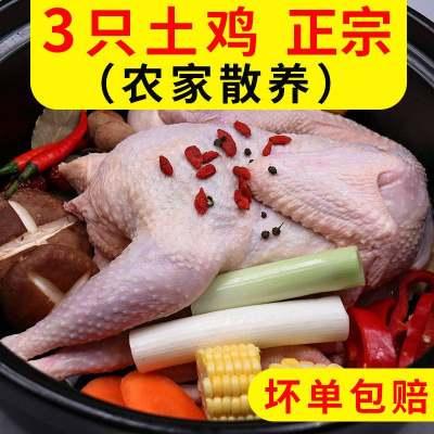 鸡肉整只土鸡三黄鸡生鸡肉烧烤食材生鲜鸡架骨人吃走地鸡农家散养