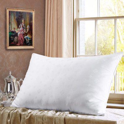 水星家纺 桑蚕丝长丝枕头芯全棉面料纯棉 丝丝心动蚕丝枕头