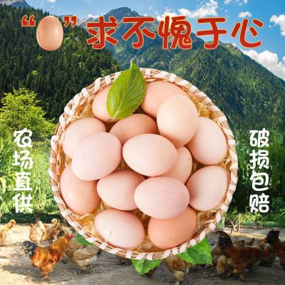30枚土鸡蛋散养农村农家正宗无菌柴鸡蛋草鸡蛋头窝蛋新鲜整箱批发