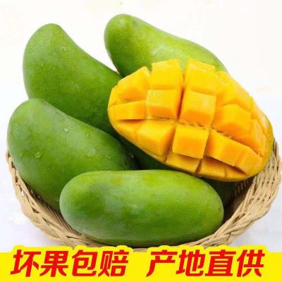 进口芒果青玉芒果新鲜水果大青芒果薄核甜芒果5/10斤大果