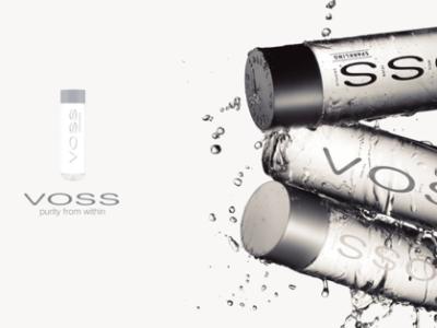 芙丝(VOSS)饮用天然矿泉水 500ml*24整箱(塑料瓶) 整箱装