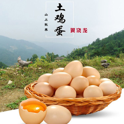 山西无污染深山跑山鸡散养玉米草籽虫子新鲜农家土鸡蛋50枚装包