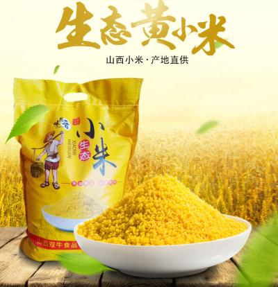 新米5斤黄小米粥小黄米山西特产农家五谷杂粮月子吃的食用米【优品】