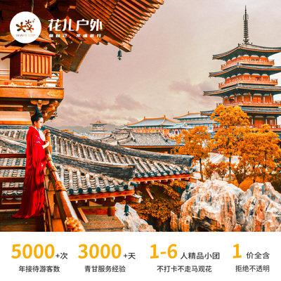 西安旅游兵马俑陕西历史博物馆一日游6人小团含门票讲解上门接送(跟团游)