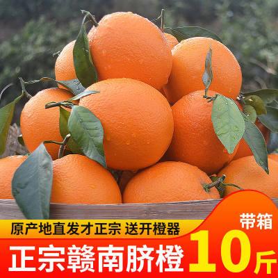 水果 江西赣南脐橙 新鲜水果橙子脐橙带箱10斤大果