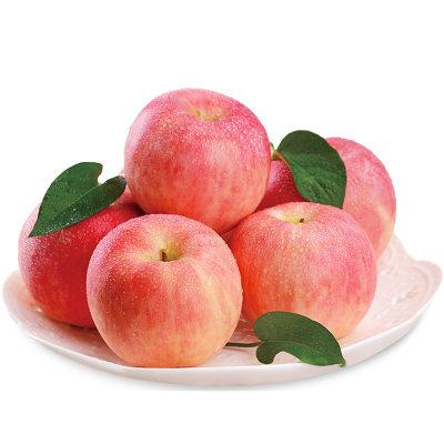 【耘凡兔000】栖霞苹果10斤新鲜果园新红富士 不打蜡苹果非陕西苹果带箱10斤苹果