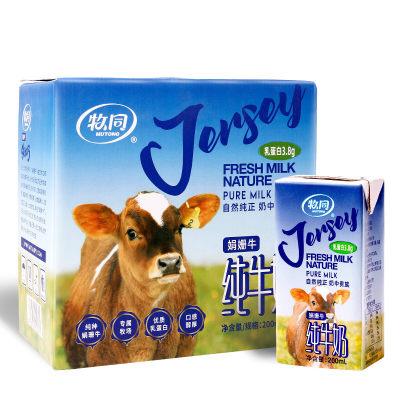 牧同纯牛奶 牧同娟姗牛奶整箱200ml*12盒高钙鲜牛奶孕妇儿童早餐纯牛奶整箱