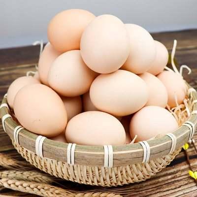 【40枚精选新鲜】正宗农家散养土鸡蛋新鲜营养笨鸡蛋当天现捡整箱包邮破损包赔